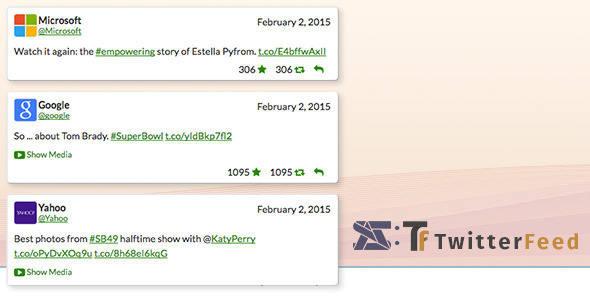 twitter feed  social plugin for wordpress screenshot