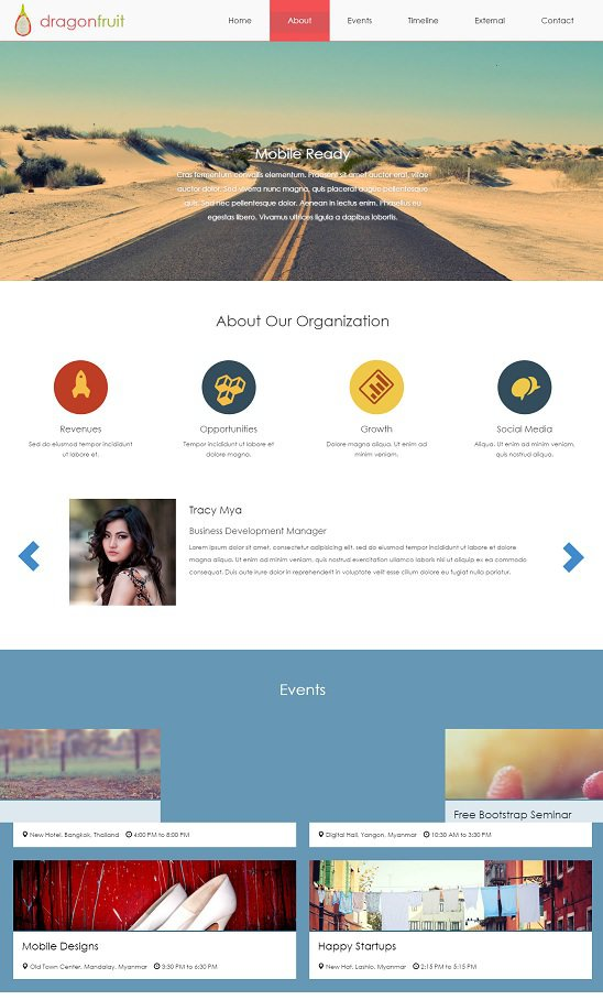 dragonfruit website template