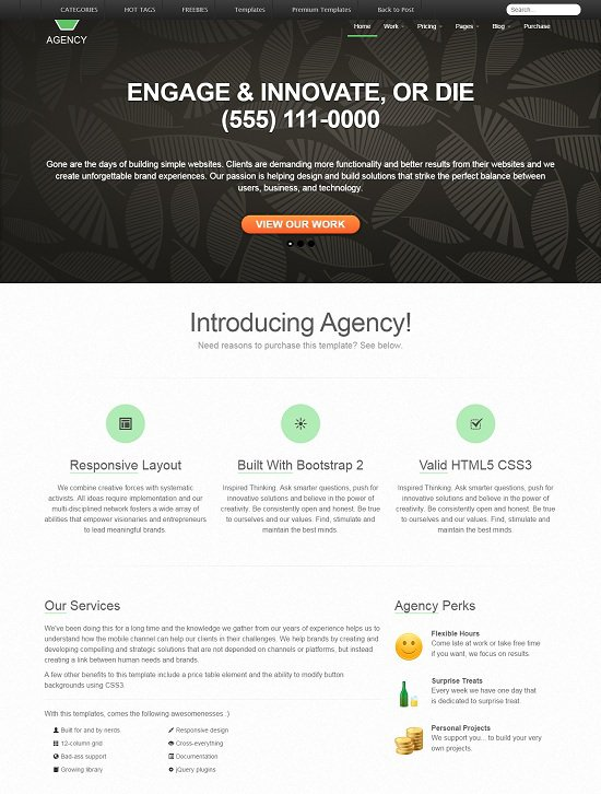 responsive business portfolio template built using twitter bootstrap: agency screenshot