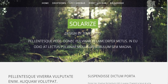solarize free responsive website template screenshot