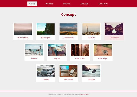 concept website layout screenshot